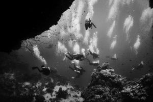 Dykare och bubblor svartvitt