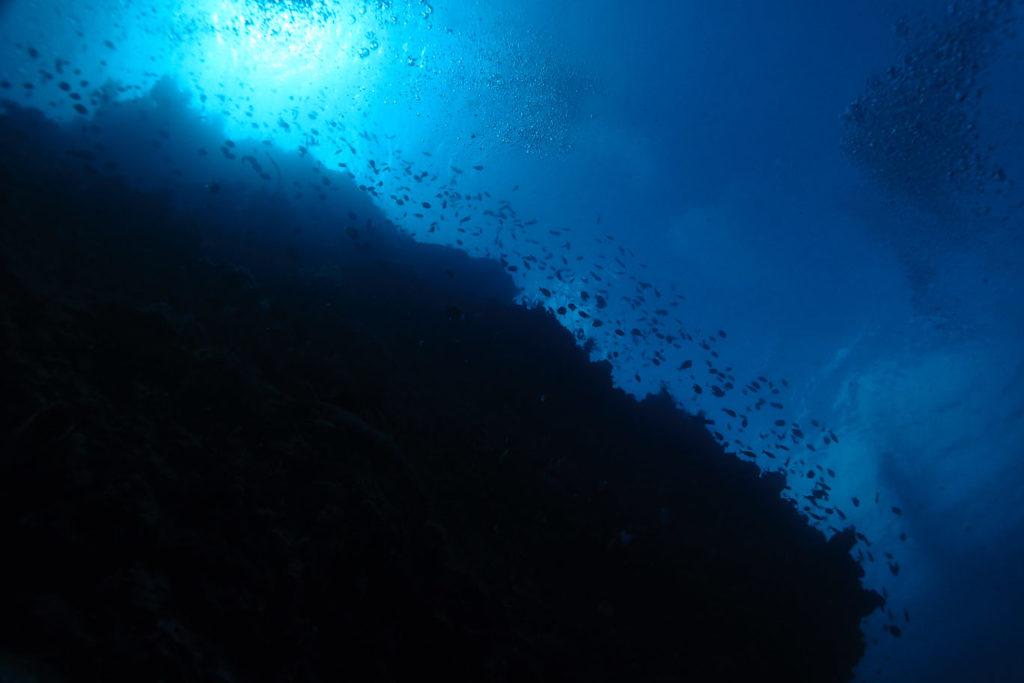 Bunaken scuba wall